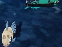 3ds-pokemon-sun-moon-sunfish-bass-2